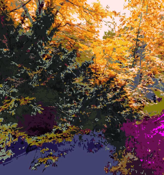 cg | Corine Grzésik | Fotokunst Berlin, Herbst, Natur, Jahreszeiten, Dämmerung, Herbstlicht